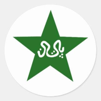Pakistan Cricket Star Round Sticker