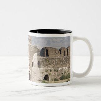 Pakistan, Dina. Talaqi Gate as seen from the Two-Tone Coffee Mug