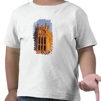 Palacio de Communicaciones, tower detail, sunset T Shirt