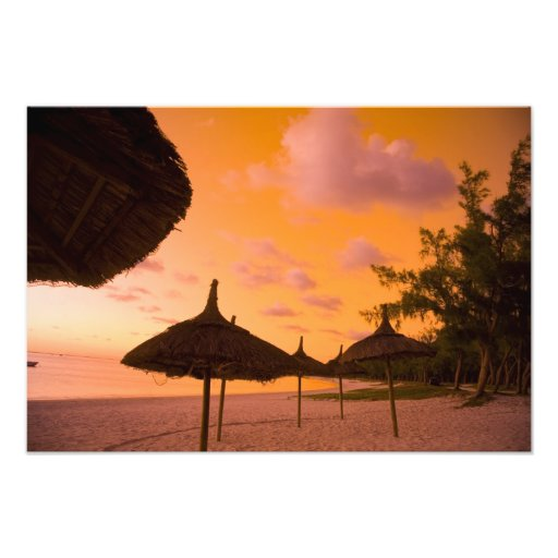Palapa style beach huts at sunrise, Belle Mare 2 Photo Print