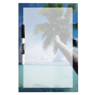 Palau, Micronesia, Palm tree at Palau Lagoon Dry Erase Board