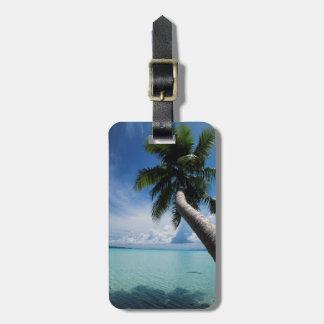 Palau, Micronesia, Palm tree at Palau Lagoon Luggage Tag