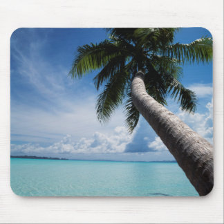Palau, Micronesia, Palm tree at Palau Lagoon Mouse Mat