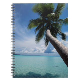 Palau, Micronesia, Palm tree at Palau Lagoon Spiral Notebook