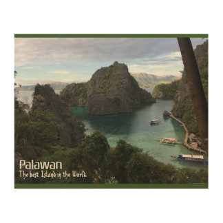 Palawan - the best Island in the World Wood Wall Decor