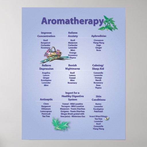 Pale Blue Aromatherapy Chart Poster