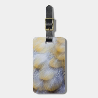 Pale Golden Thrush Feather Abstract Luggage Tag