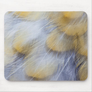 Pale Golden Thrush Feather Abstract Mouse Mat