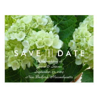 Pale Green Hydrangea Save the Date Postcard