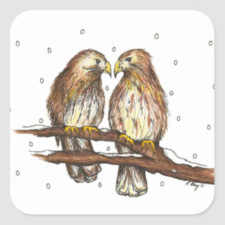 Pale Male Lola Central Park Red Tailed Hawk Bird Square Sticker