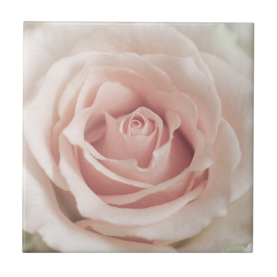 Pale Peach Antique Rose Background Customised Tile
