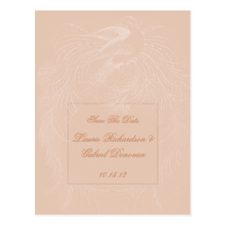 Pale Peach Dove on Peach Save The Date Postcard