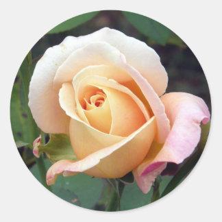 Pale Peach Rosebud Round Sticker