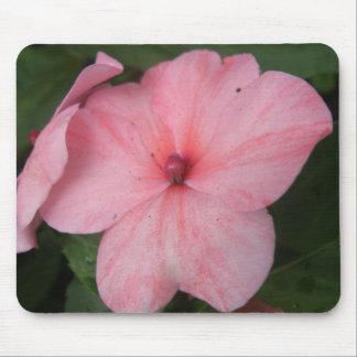 Pale Pink Impatiens Flower Mousepad