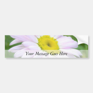 Pale Pink Painted Daisy Bumper Sticker