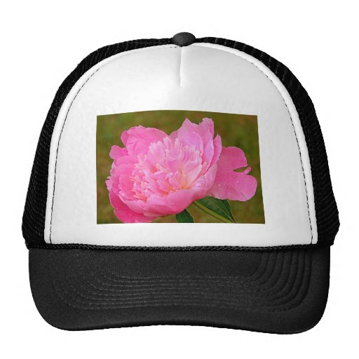 Pale Pink Peony Trucker Hat