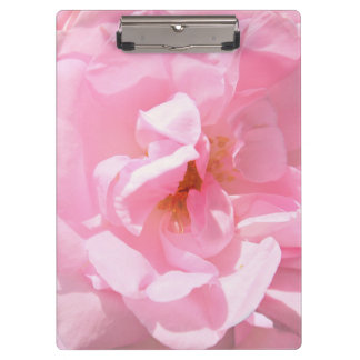 pale pink rose petals clipboards