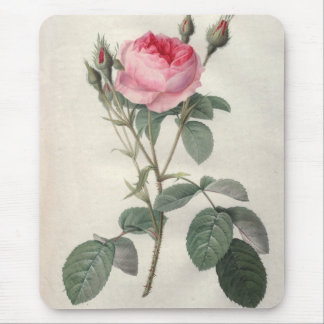 Pale pink vintage roses painting mouse pad