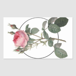 Pale pink vintage roses painting rectangular sticker