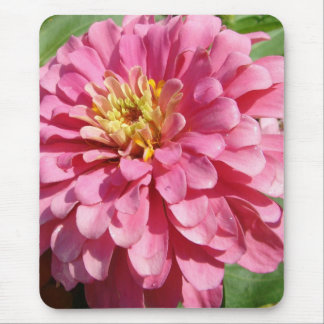 Pale Pink Zinnia Mouse Pad
