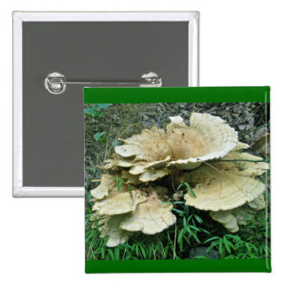 Pale Shelf Fungus Coordinating Items 15 Cm Square Badge