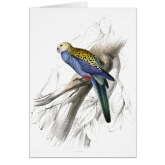 Paleheaded Parrakeet by Edward Lear Greeting Card