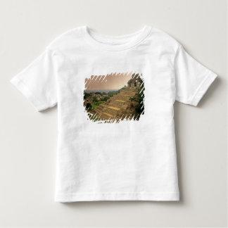 Palenque, Chiapas, Mexico, Maya Toddler T-Shirt