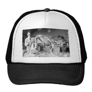Paleontology Scientist Baby Dinosaur Vintage Mesh Hats