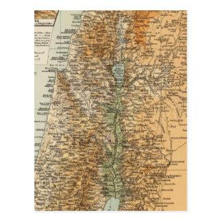 Palestine 3 postcard