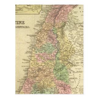 Palestine & Adjacent Countries Postcard