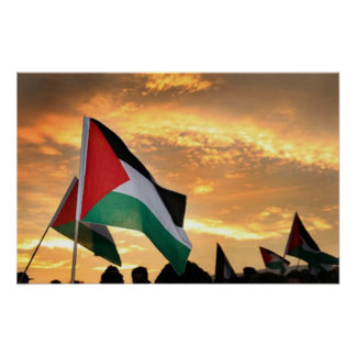 Palestine Flag View Poster