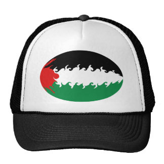 Palestine Gnarly Flag Hat