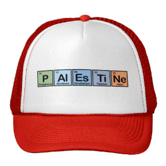Palestine made of Elements Cap