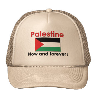 Palestine Now And Forever Cap