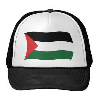 Palestinian Authority Flag Hat