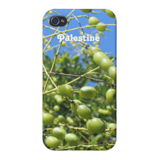 Palestinian Territory Olives iPhone 4/4S Cases