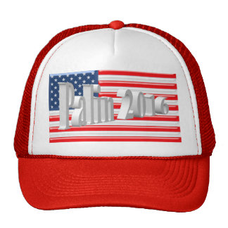 PALIN 2016 Cap, White 3D, Old Glory Mesh Hat