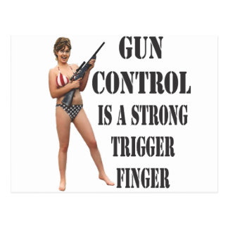 Palin on Gun Control 2012 Postcard