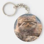 Pallas Cat Basic Round Button Key Ring