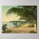 Palm Beach 1898 vintage Florida scene Poster