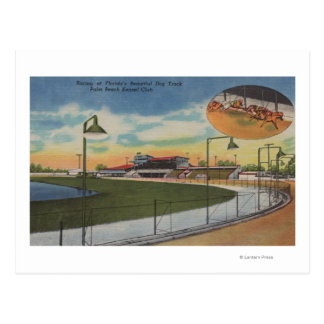 Palm Beach, FL - Kennel Club, Dog Racing Track Postcard