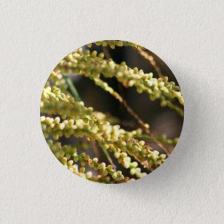 Palm Blooms pin