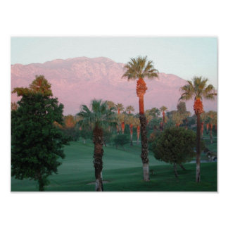 Palm Desert at Sunset Poster
