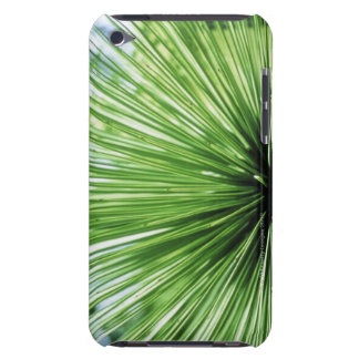 Palm frond, close up iPod touch cases
