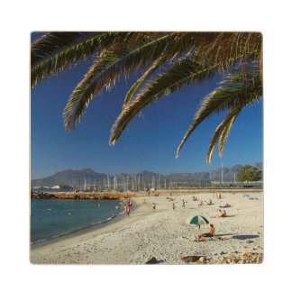 Palm Fronds Over Beach At Gordon's Bay Maple Wood Coaster