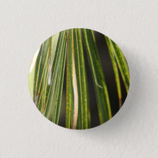 Palm Fronds pin