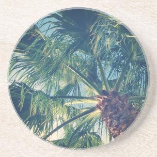 Palm Fronds Sandstone Coaster