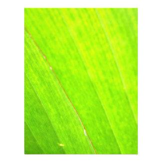 PALM LEAF 1618 LIGHT NEON GREEN NATURE VEGETATION FLYER
