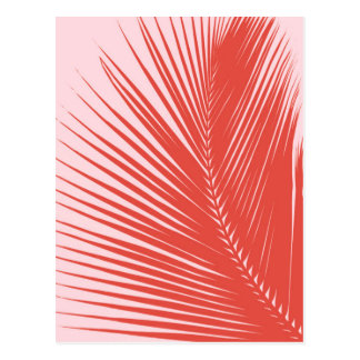 Palm leaf - Coral and shell pink Postcard