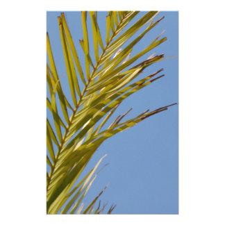 Palm Leaf Flyer